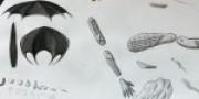 De Rijten 2015: Magritte